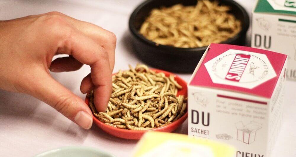 criquets comestibles startup bastien insectes jiminis